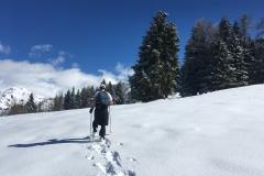 raquettes à neige authion (11)