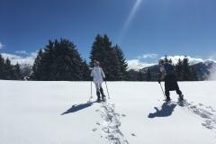 raquettes à neige authion (13)