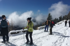raquettes à neige authion (16)