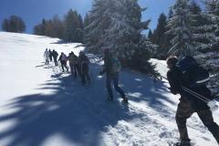 raquettes à neige authion (4)