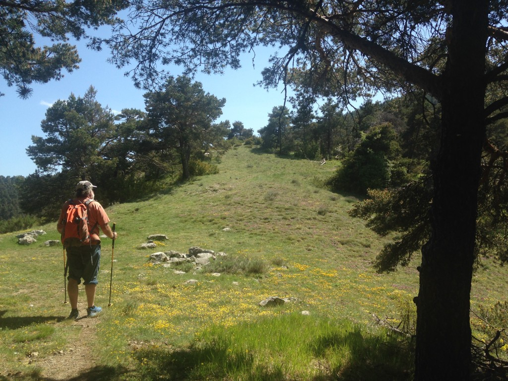 Mt Vial par Malaussène - col de Serse