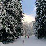 raquettes à neige au Boréon