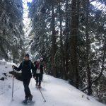 Randonnée en raquettes à neige au Boréon | Vésubie | Mercantour