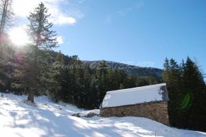 Randonnée en raquettes à neige au Boréon