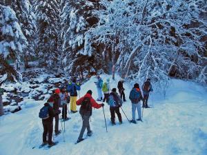 Randonnée en raquettes à neige dans la forêt nordique du Boréon