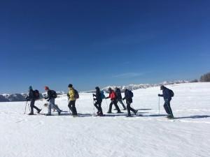 raquettes à neige brussière 25 fevrier (2)